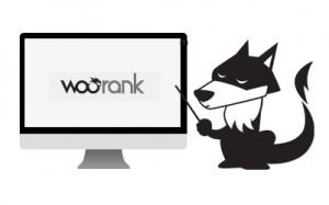 analisis-woorank-300x187 analisis-woorank