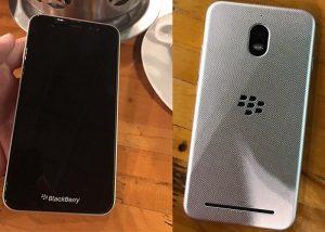 blabkberry-300x214 blabkberry