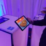 venecia-150x150 Catspad, App para Alimentar Gatos