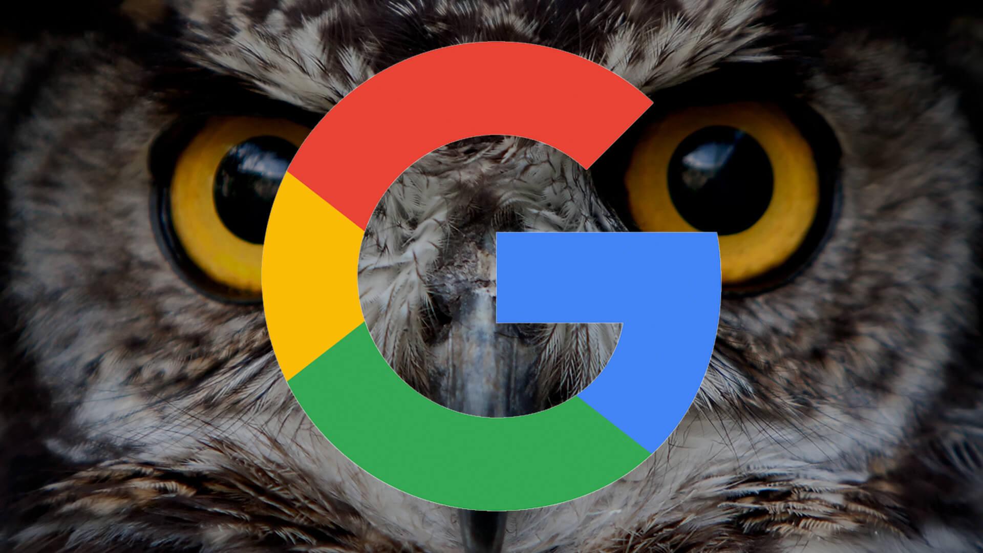 google proyecto buho