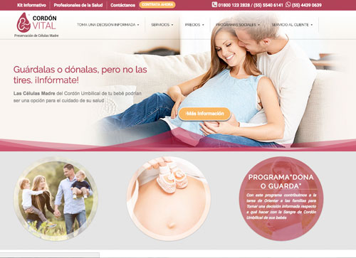 Desarrollo de pagina web Cordon Vital