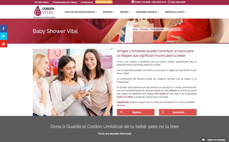 sitio-web-administrable Cordón Vital: Una Página Web Administrable